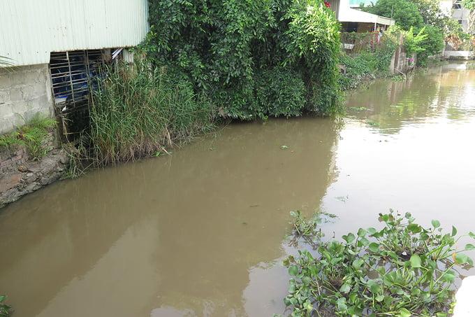 dùng nước mương ô nhiễm sản xuất 'nước tinh khiết' 3